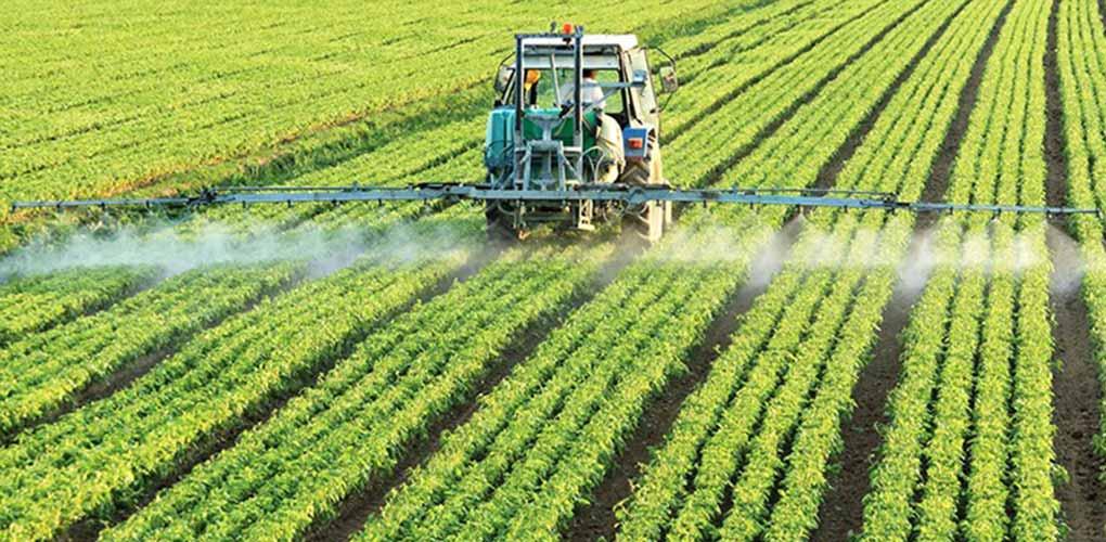 silmaca - Fertilizantes Nitrogenados – MAQVECA